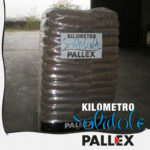 foto_solidale_v14-pall-ex